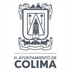 H. AYUNTAMIENTO CONSTITUCIONAL DE COLIMA, COL (1993)