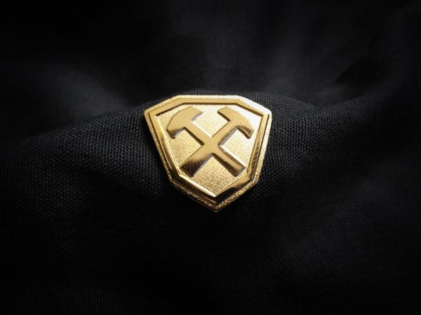 Hammershield Gold Pin