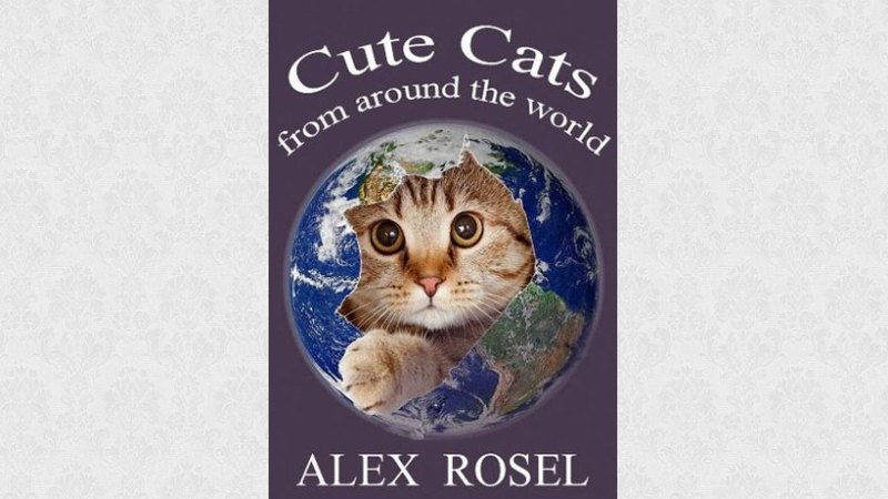 Cute Cats From Around the World