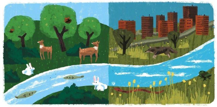 conservacion de los ecosistemas