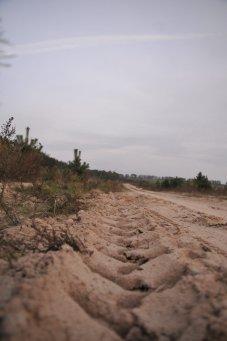 Фото природы. Пейзажи. Текстуры. Профессиональный фотограф в Киеве. 71