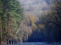 Фото природы. Пейзажи. Текстуры. Профессиональный фотограф в Киеве. 87