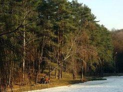 Фото природы. Пейзажи. Текстуры. Профессиональный фотограф в Киеве. 97