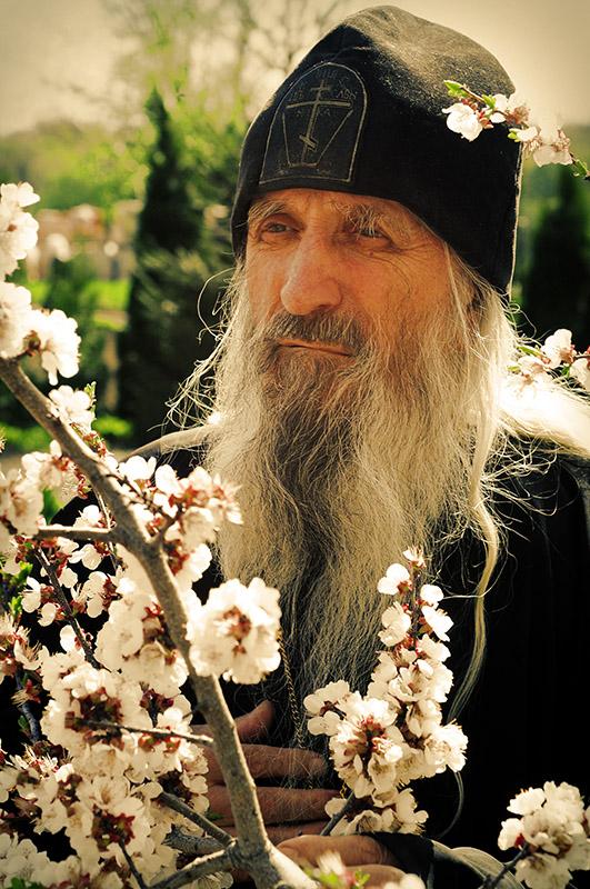 Фото портрет отца Херувима