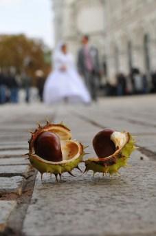 wedding_0003