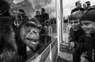 national-geographic-photo_kiev_0081