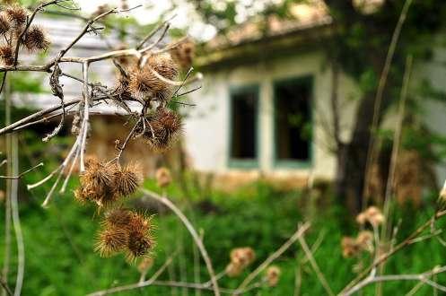 photo_ryhlov_monastery_0140