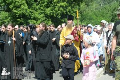 0229_great ukrainian procession with the prayer for peace and unity of ukraine