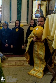 provocation orthodox procession_makarov_0659