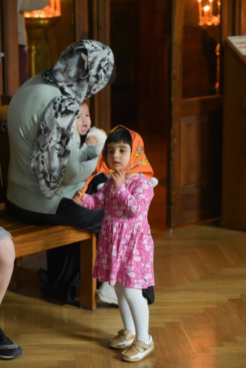 The Orthodox Center of Art Photography presents a Sunday reportage from the Holy Trinity Monastery of Ionin. Many family photos, portraits. All the photos were shot in the reportage mode.