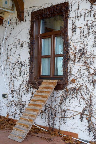 фотосессия, olshanka monastery 0004