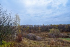autumn landscape ukraine 0004