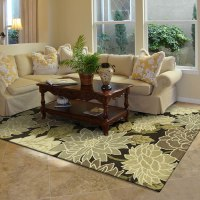 Transitional Area Rugs & Contemporary Area Rugs in Kansas City