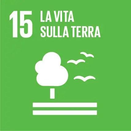 agenda 2030 -la vita sulla terra