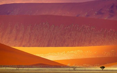 The Shimmering Sands of Sossusvlei, South of Namibia