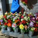 Artificial Flower Box Only