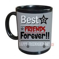 BEST friend mug 699