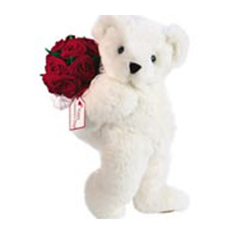 Roses With Teddy Bear