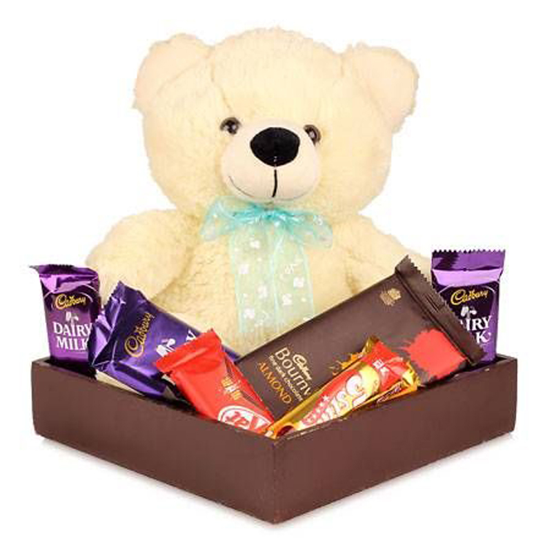 Teddy Bear Chocolate Pack