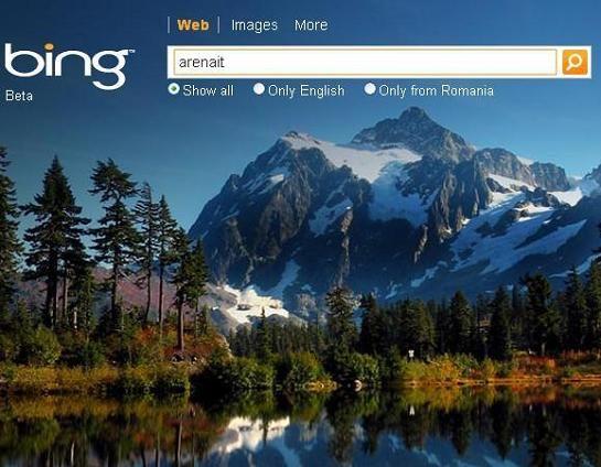 Bing_arenait