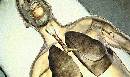 Trahee crescuta din celule stem