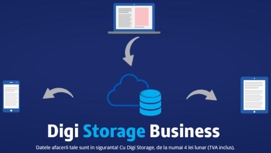 RDS_Digi_Storage_Business