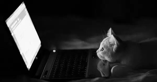 Harga Laptop Semua Merk Terbaru