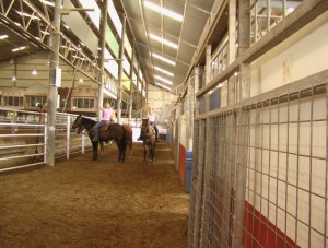 Stalls Beside the arena 1