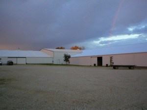 Outside horse barn 3 and 4