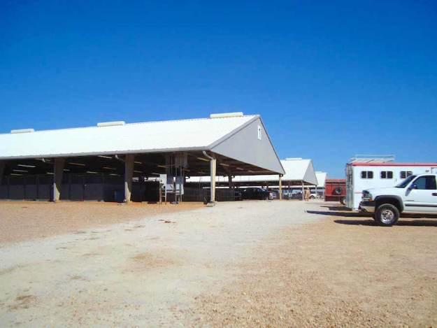 Stall Barns