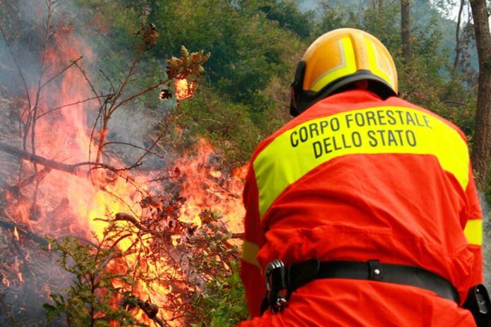Incendio Forestale