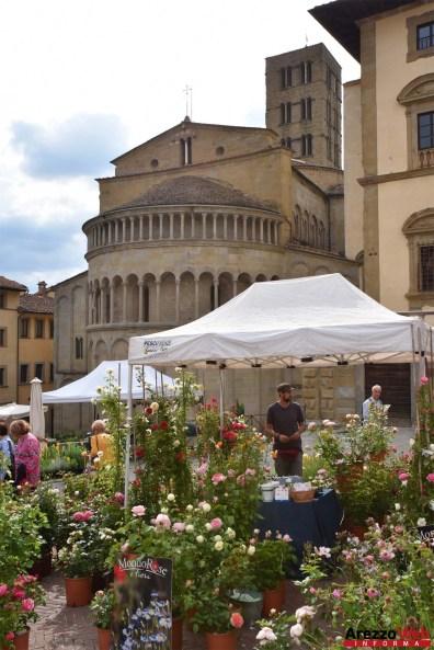 Fiori in Piazza Grande - Arezzo 17
