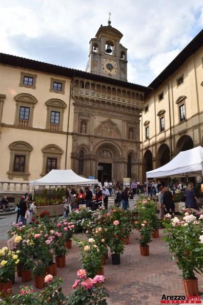 Fiori in Piazza Grande - Arezzo 18