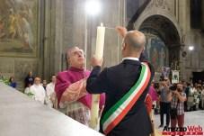 Offerta Ceri e Fuochi San Donato - 27