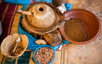 Argan Oil Manual Producing