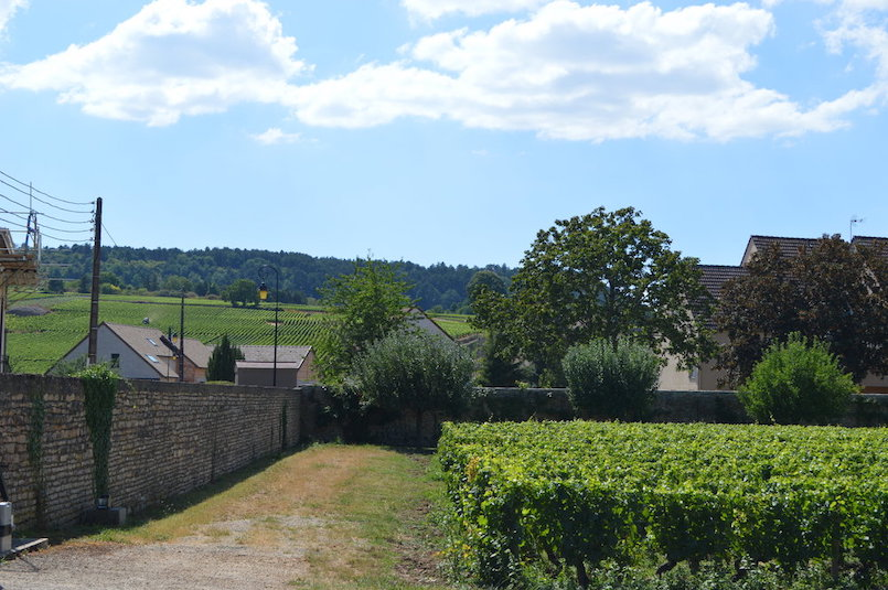 Domaine Rougeot1