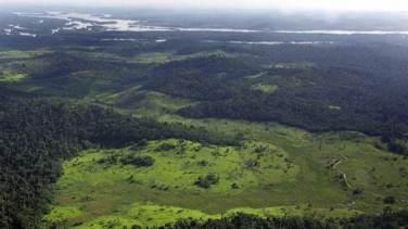 La Amazonía cumple un rol vital en regular el clima del planeta