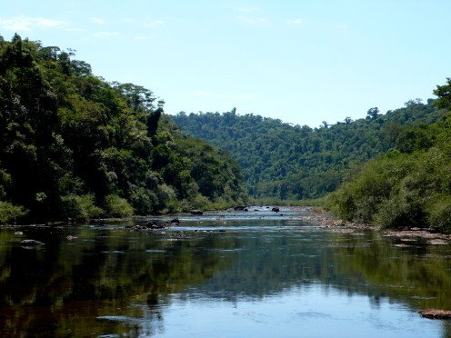 Ecología dio a conocer todos los estudios sobre el camino del Lote 8 en el Parque Provincial Moconá