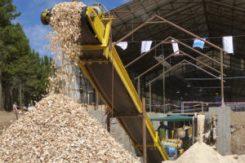 Biomasa-Forestal-1ptrnjjf8g7g-300x200