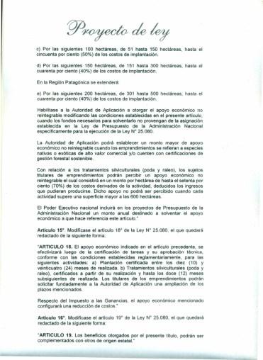 Proyecto-Ley-Prorroga-y-modificación-ley-250805-