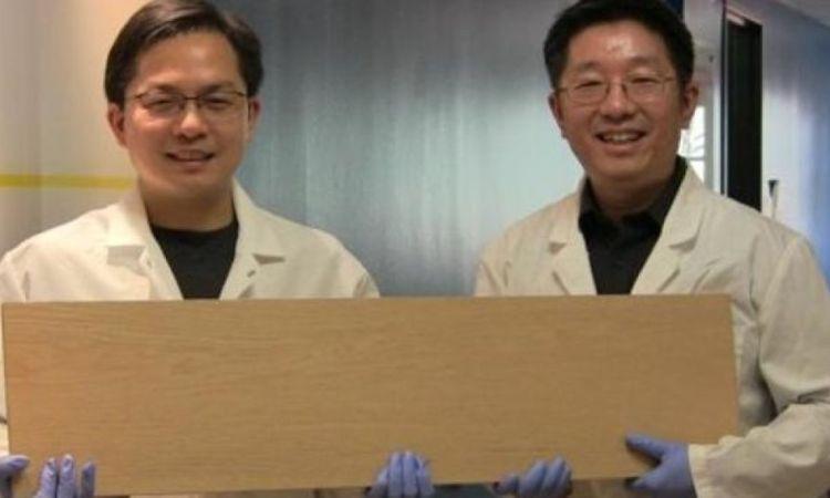 Ingenieros sostienen la madera
