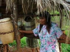 Selva misionera 4.Ecos
