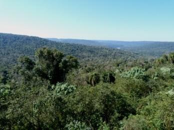EcosistemasForestales2