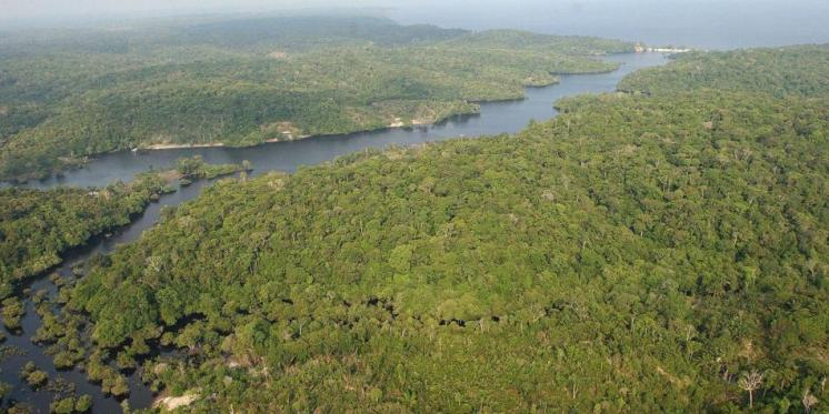 AmazoniaBrasil