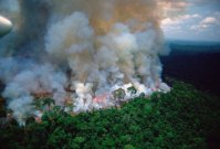 IncendioenAmazonia1