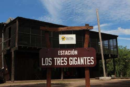 tres gigantes Estacion