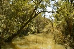 Conservacion Refugio Privado Mocona