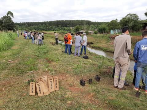 Foto plantacion 5