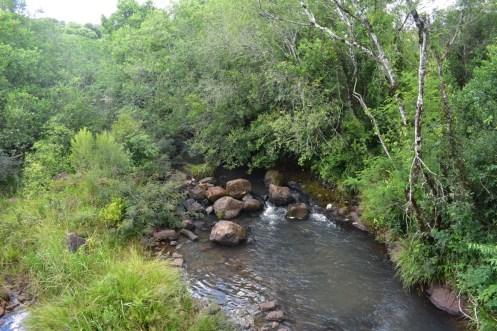 Arroyos en San Vicente 2
