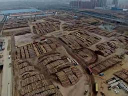 China Puertos (8)
